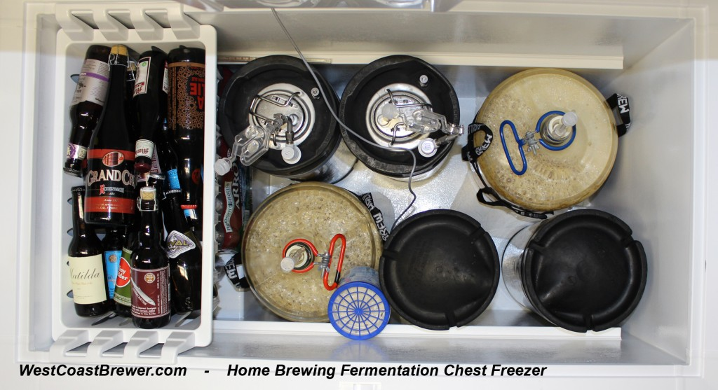 Fermentation Freezer for Home Brewing Beer